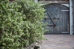 Garden area, foliage & wooden doors